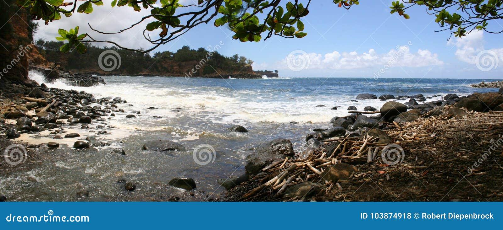 Panorama Kapaau Havaí da praia de Keokea