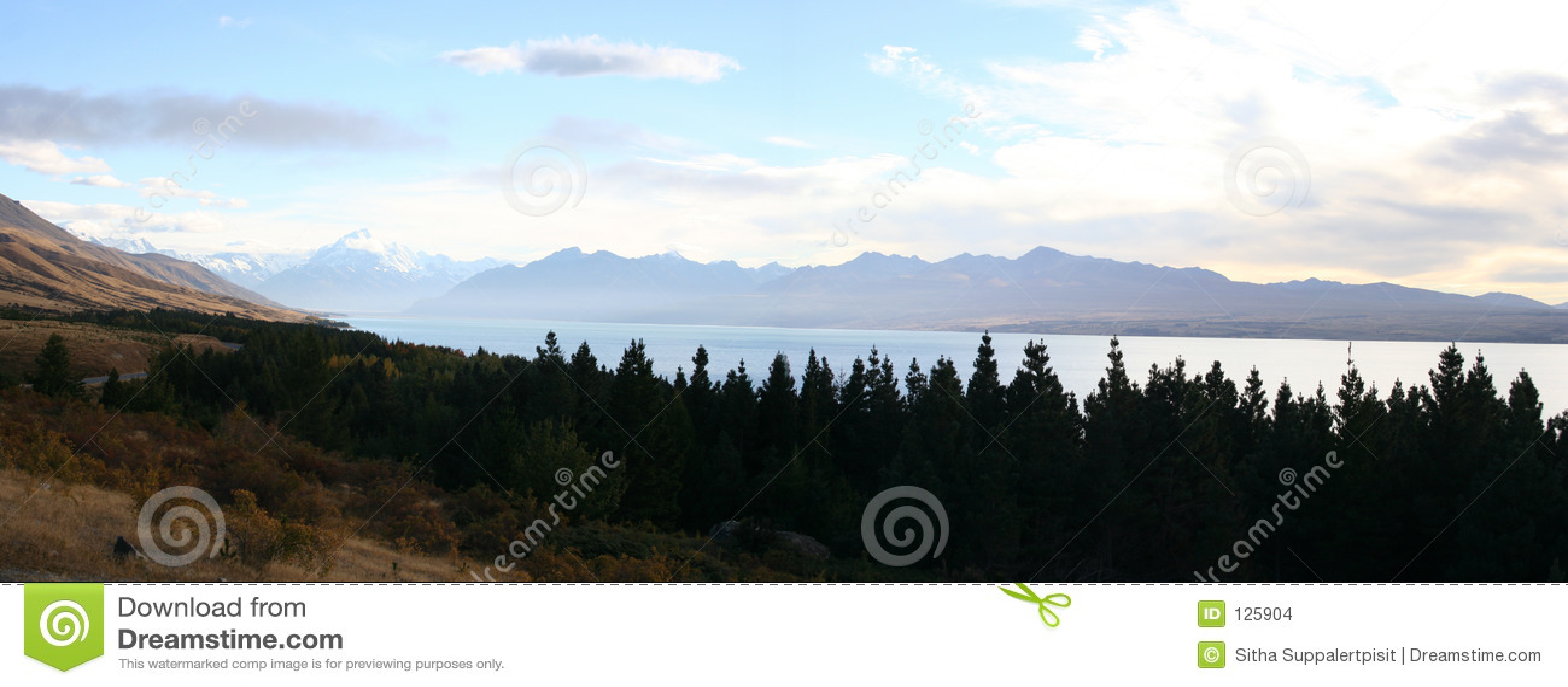 Panorama - lungo la strada al cuoco di Mt, Nuova Zelanda