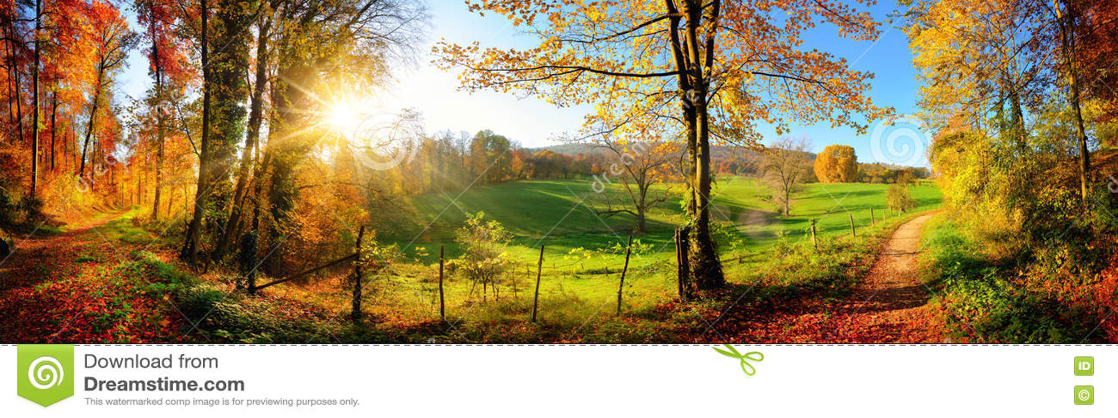 panorama magnifique de paysage en automne image stock image du beau rayons 76383591. Black Bedroom Furniture Sets. Home Design Ideas