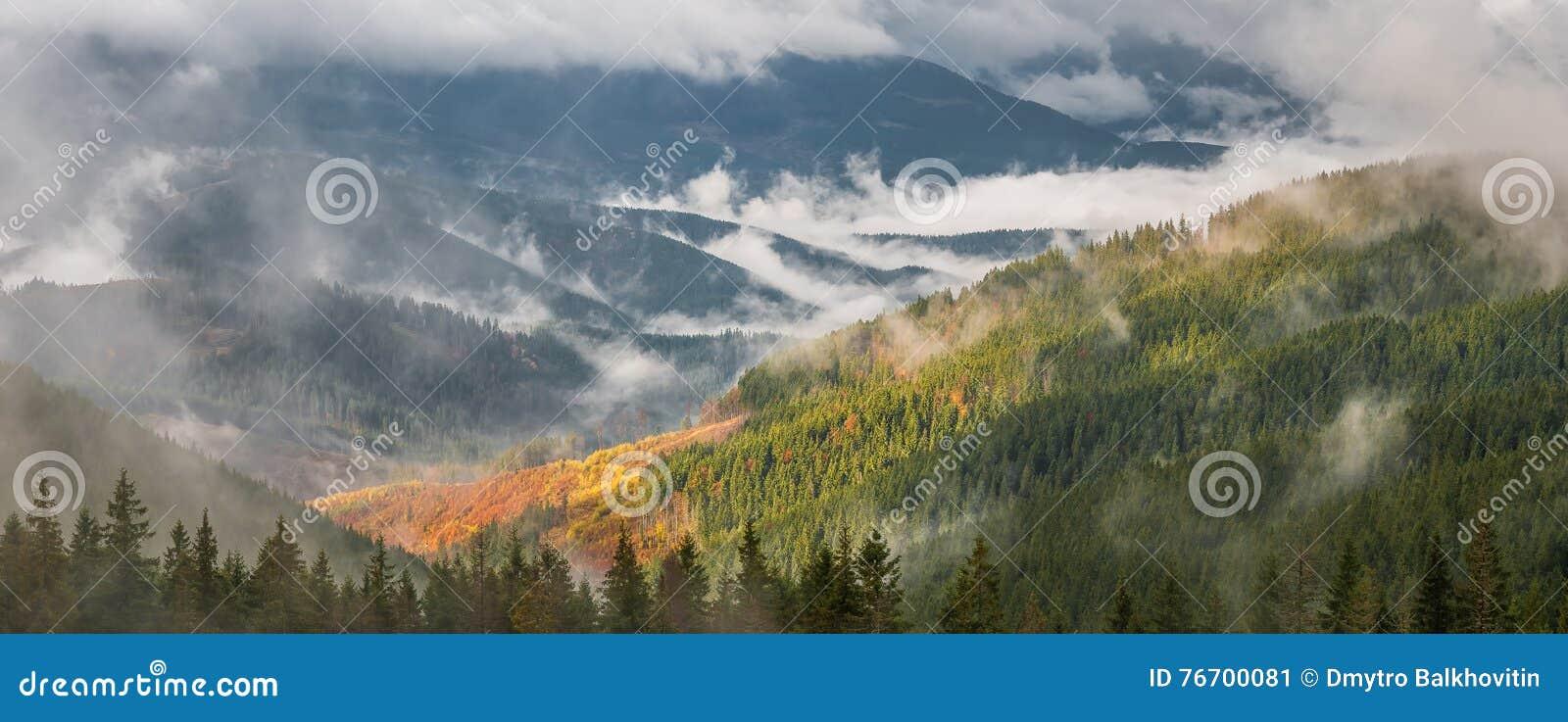 Panorama med skogen och moln