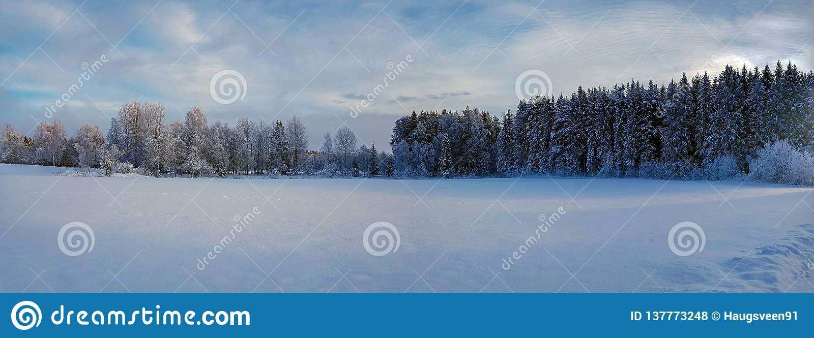 Panorama photo of winter landscape in Hedmark county Norway