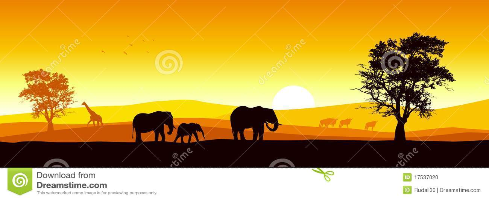 Panorama- safari