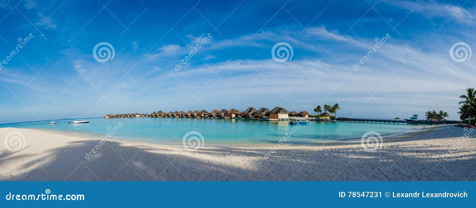 Panorama tropical bonito surpreendente da praia de bungalos da água perto do oceano com as palmeiras sob o céu azul em Maldivas