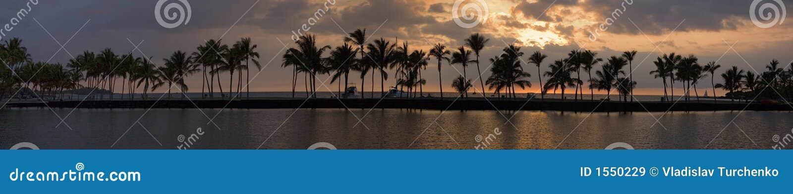 Panorama tropical de la puesta del sol