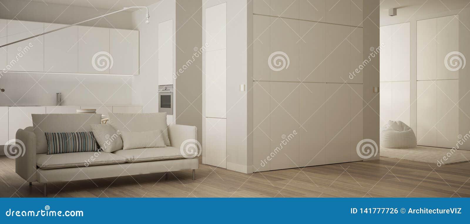 Panorama van één ruimteflat met parketvloer, keuken in witte woonkamer met bank, modern architectuurbinnenland