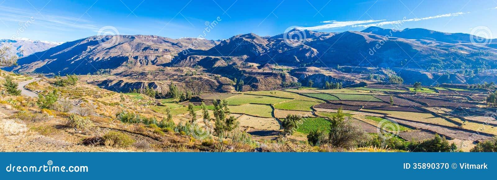 Panorama van Colca-Canion, Peru, Zuid-Amerika.  Incas om de Landbouwterrassen met Vijver en Klip te bouwen.
