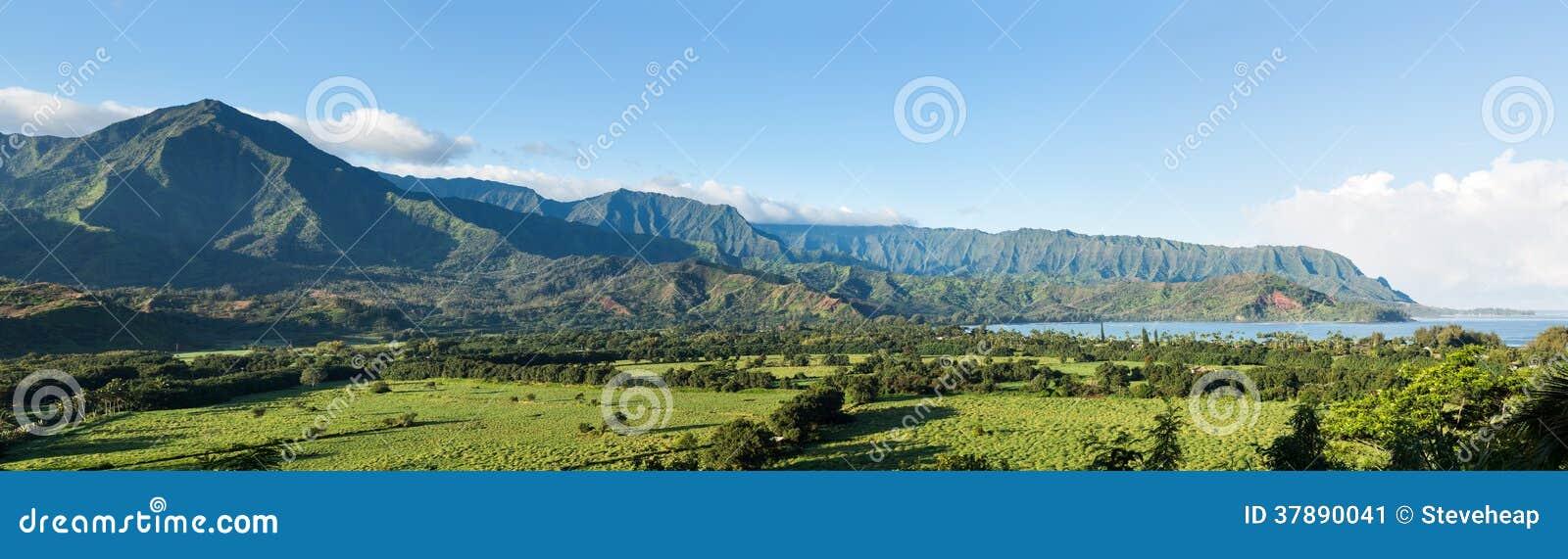Panorama van Hanalei op Eiland Kauai