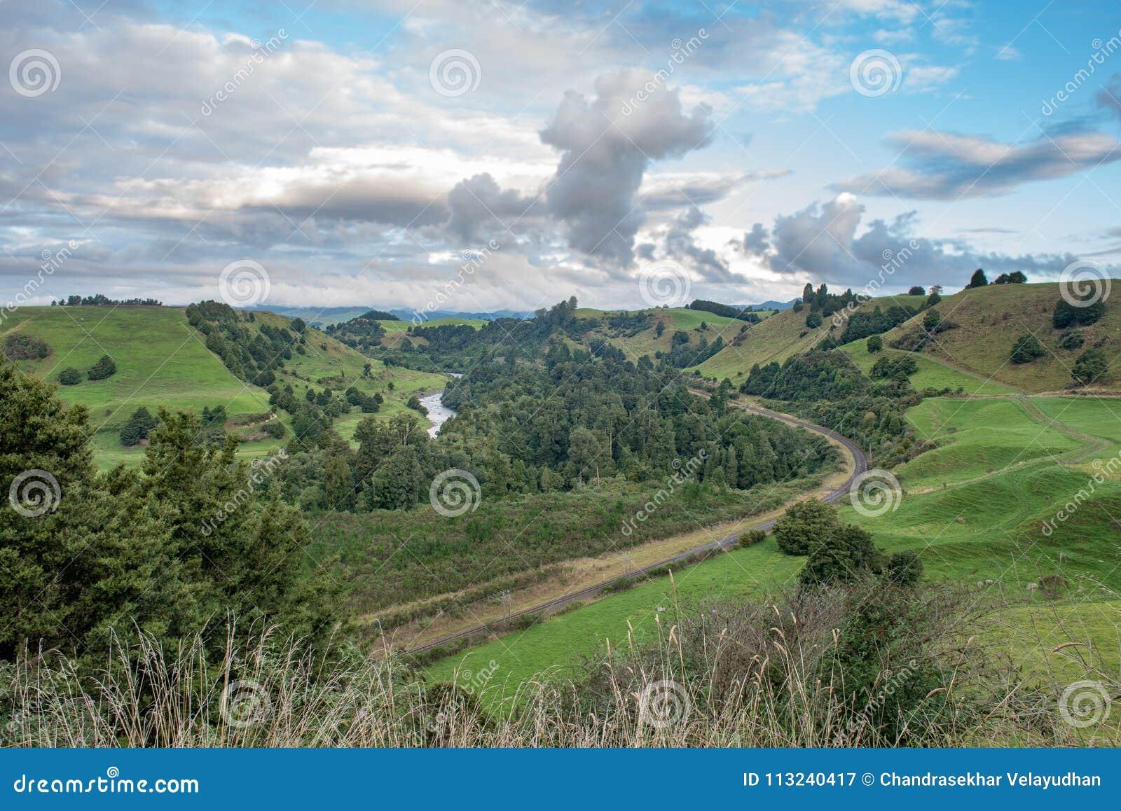 Panorama van Piriaka-Vooruitzicht dichtbij Manunui in Nieuw Zeeland