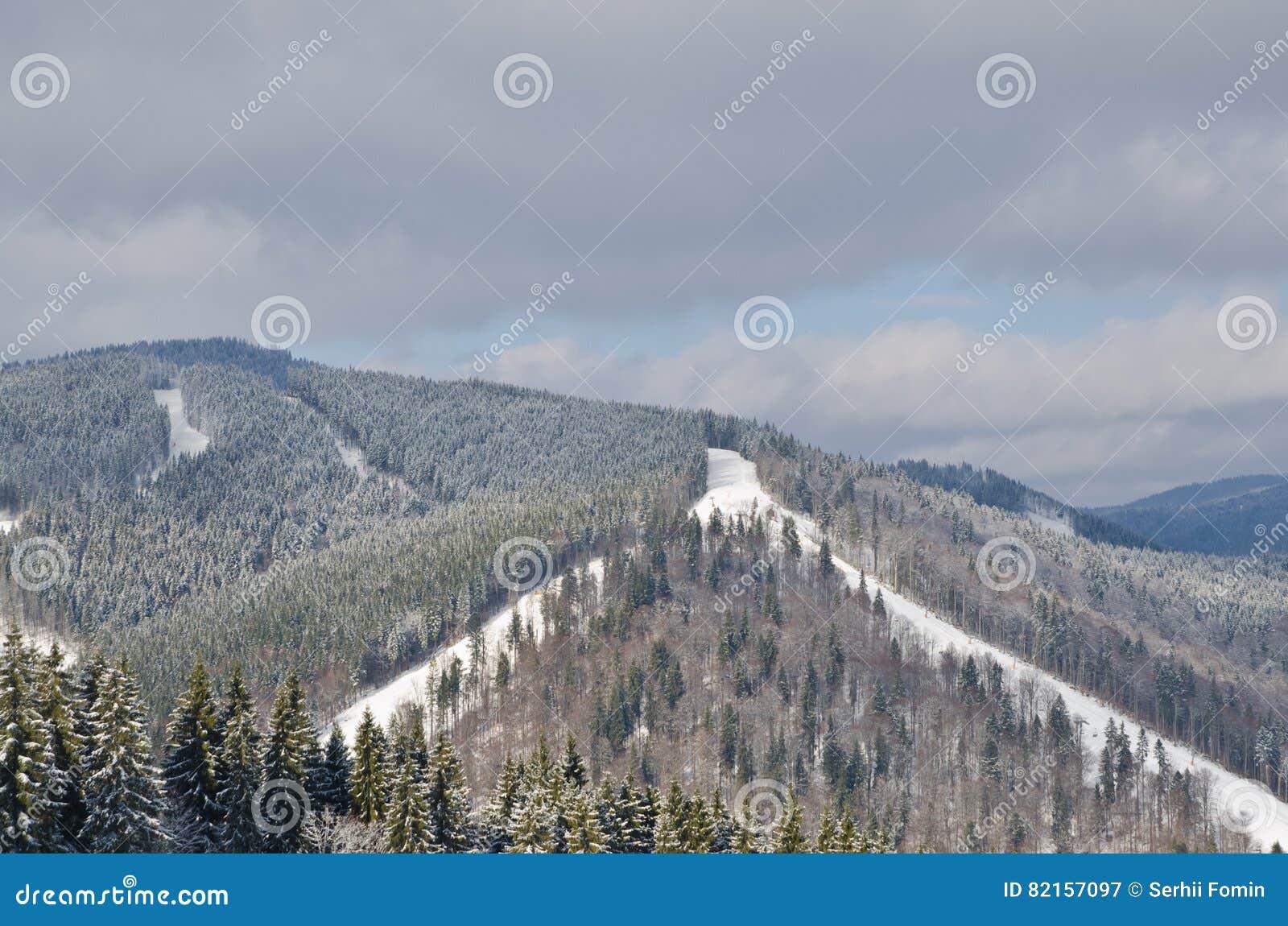 Panorama Van Sneeuwbergen En Bos In Een Skitoevlucht Weer In De