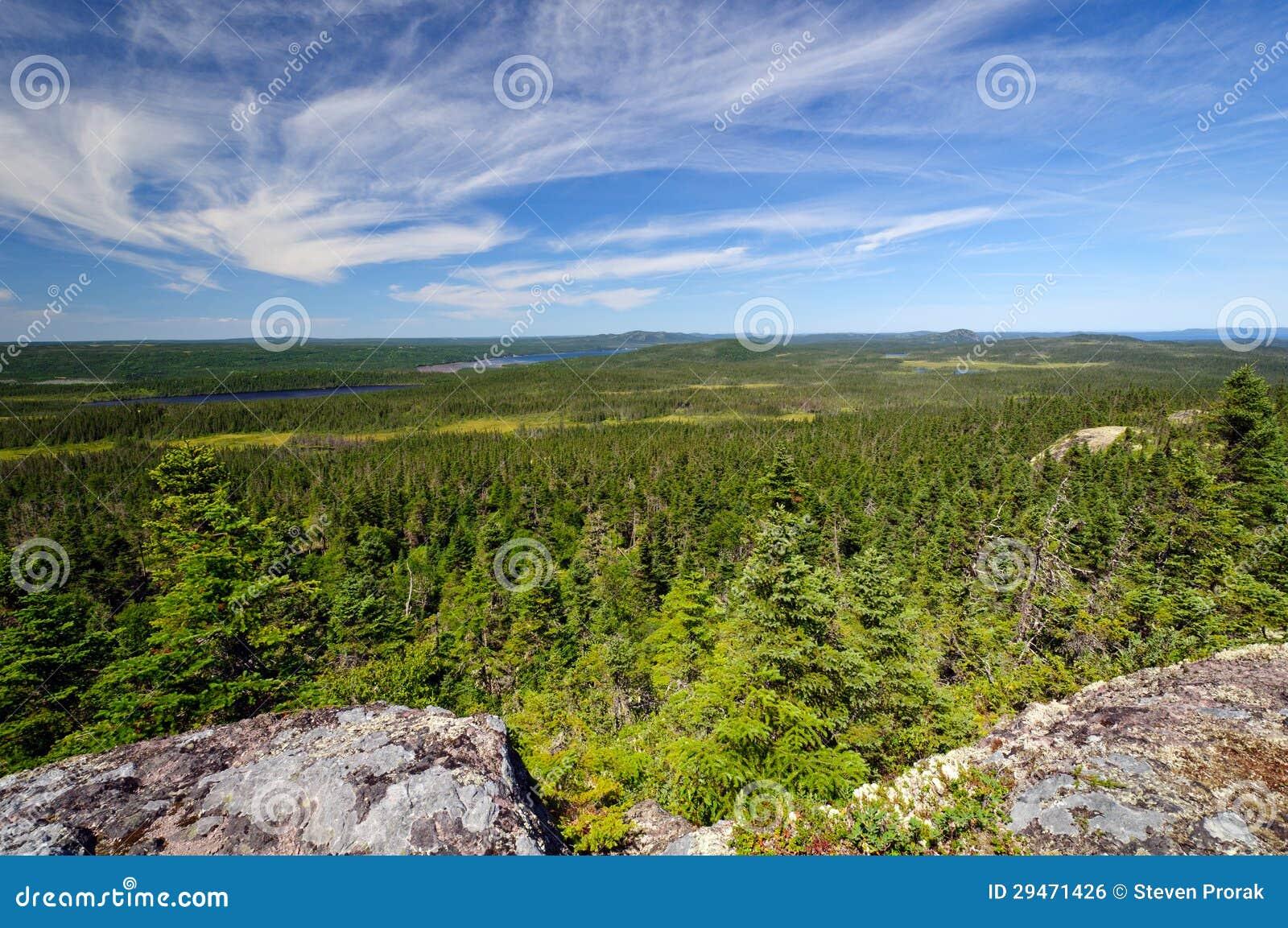 Panorama vanaf een Bovenkant van de Berg