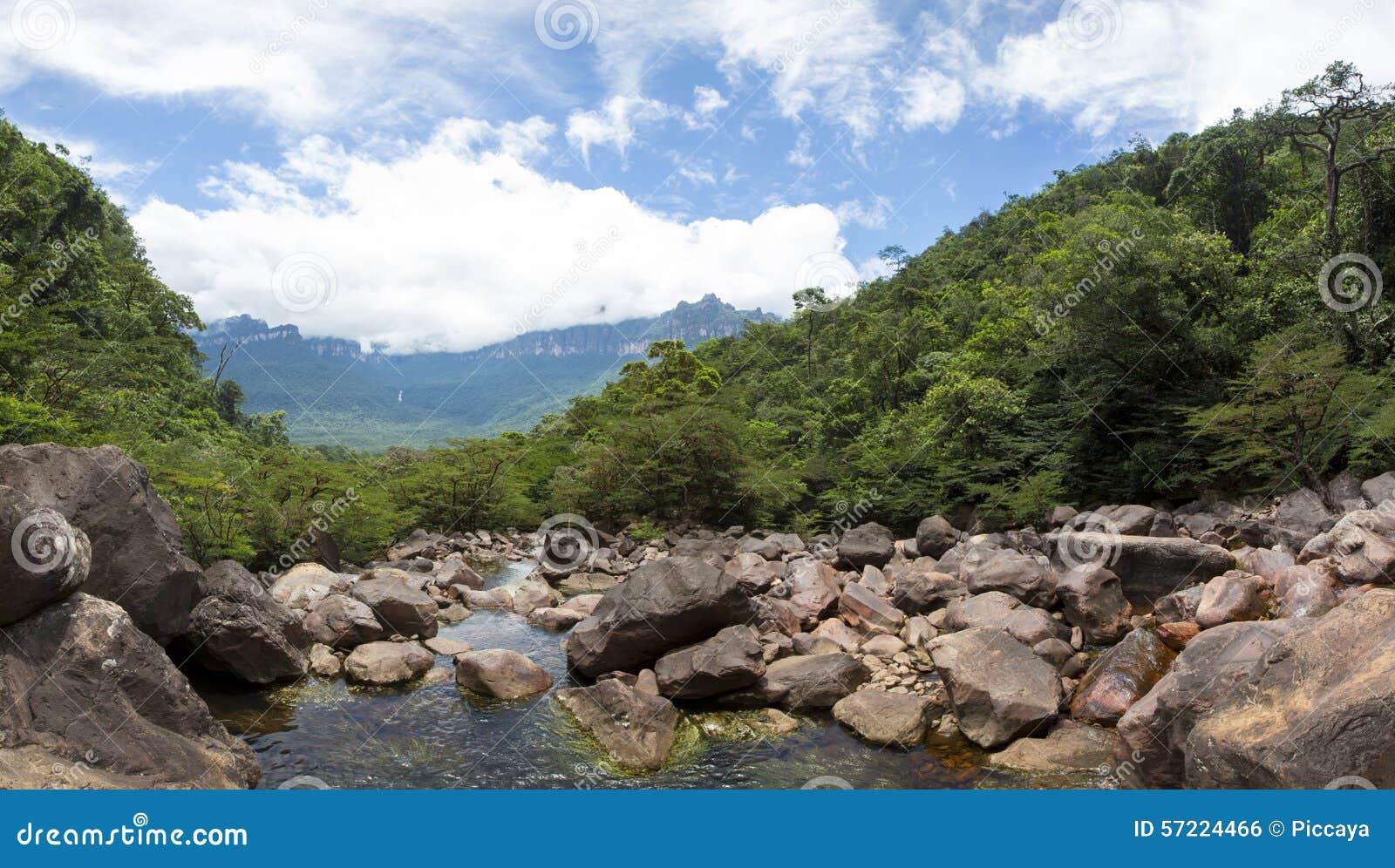 Panorama Von Wildem Fluss Von Steinen Und Von Wald In Venezuela