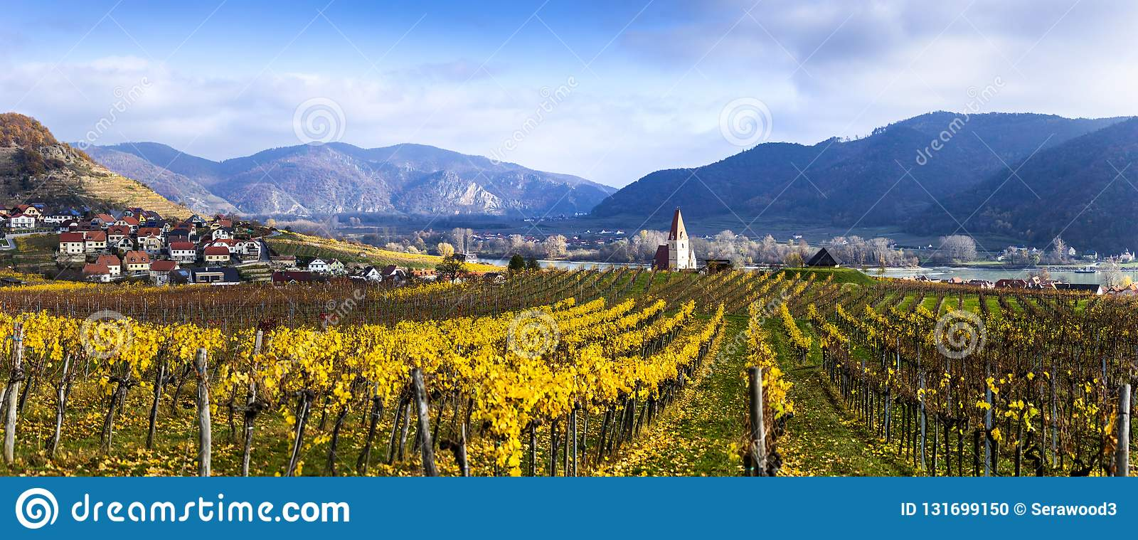 Panorama of Weissenkirchen. Wachau valley. Lower Austria. Autumn colored leaves and vineyards.