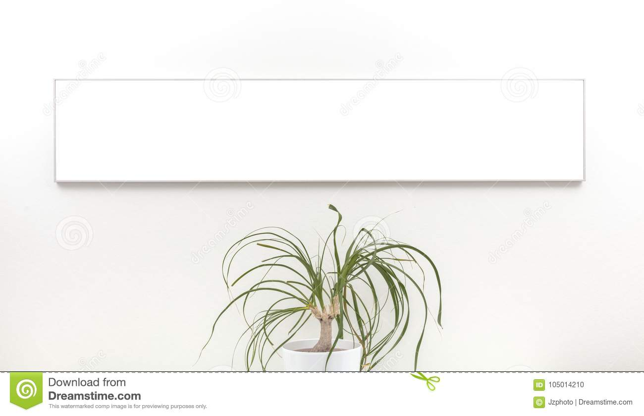 White Panorama Mockup Frame On A White Wall And A Green Flower Stock ...