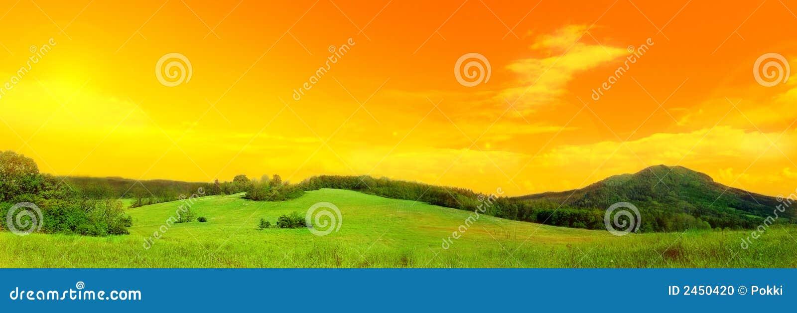 Panoramafoto der Wiese