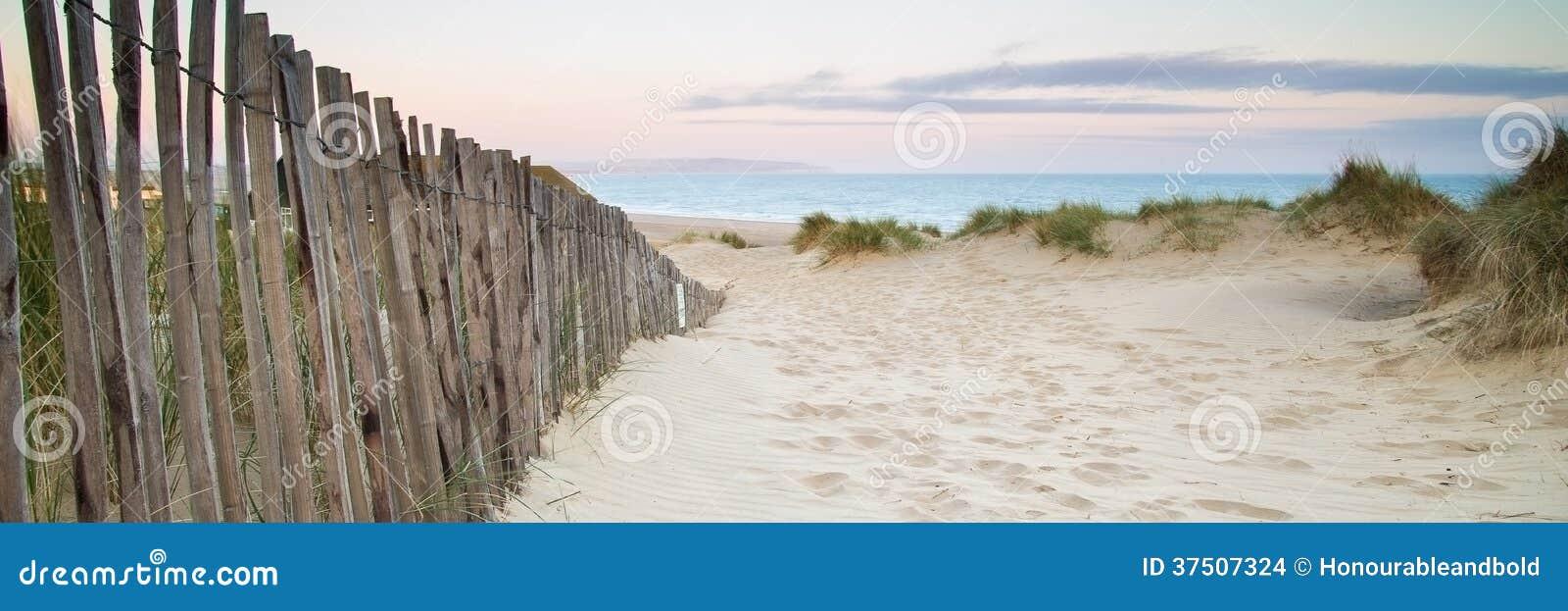 Panoramalandskap av systemet för sanddyn på stranden på soluppgång