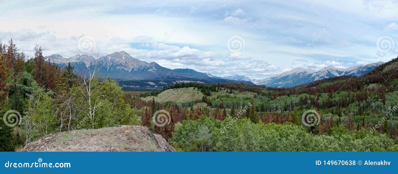 Panoramautsikt av de steniga bergen