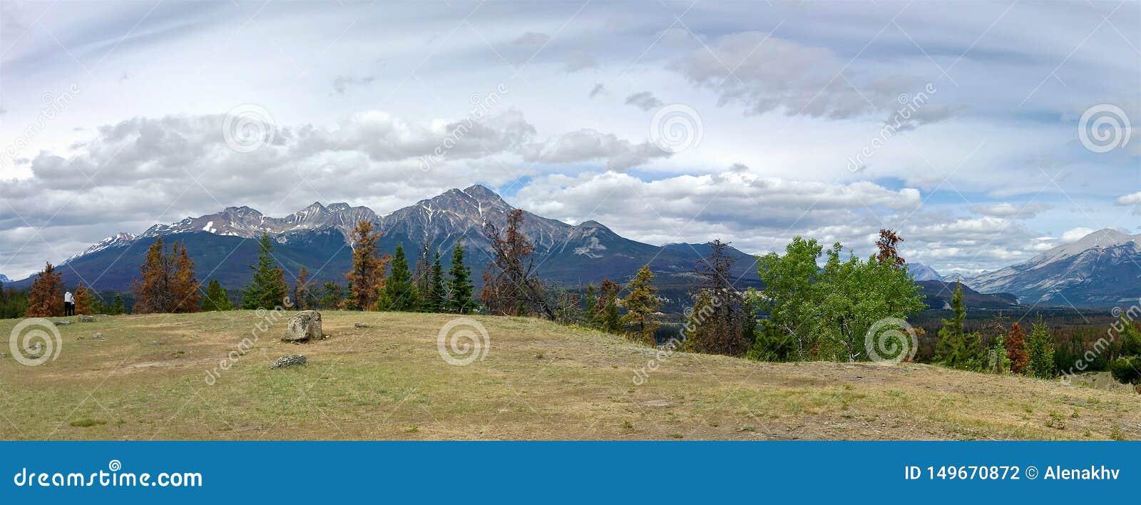 Panoramautsikt av de steniga bergen i Jasper National Park