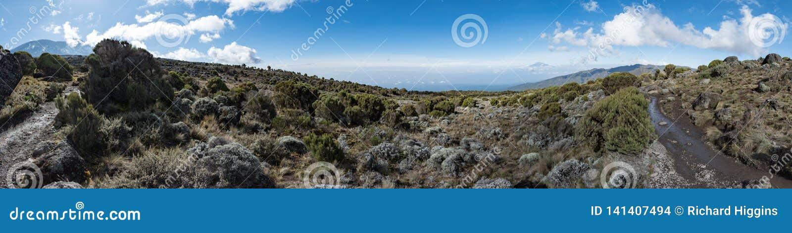 Panoramautsikt som tas i hedlandzonen av den Machame rutten på Mount Kilimanjaro