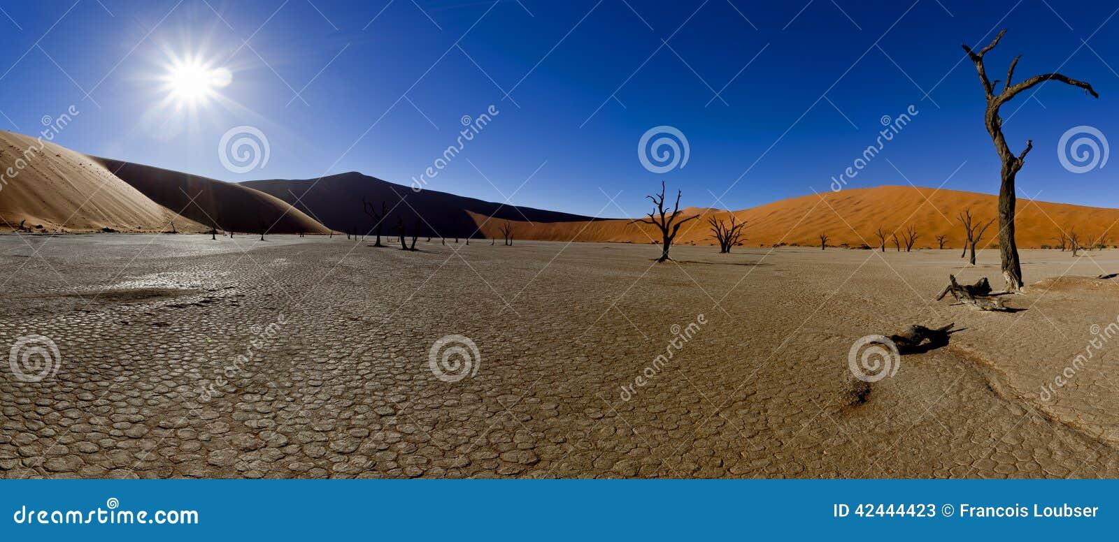 Landscaping Over Sand : Panoramic desert landscape stock photo image