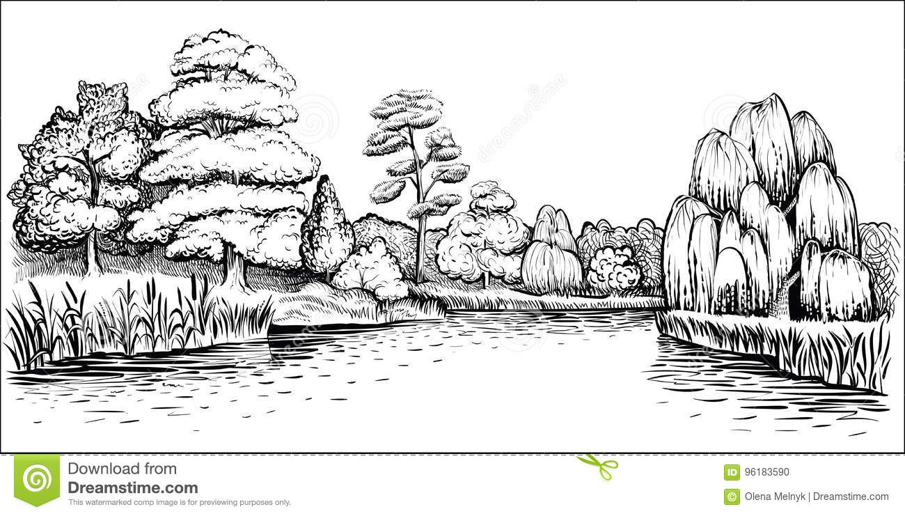 Line Drawing River : Panoramic landscape with trees and river vector hand
