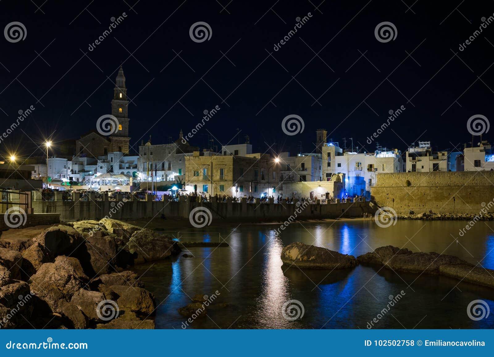 Panoramic nightview of Monopoli