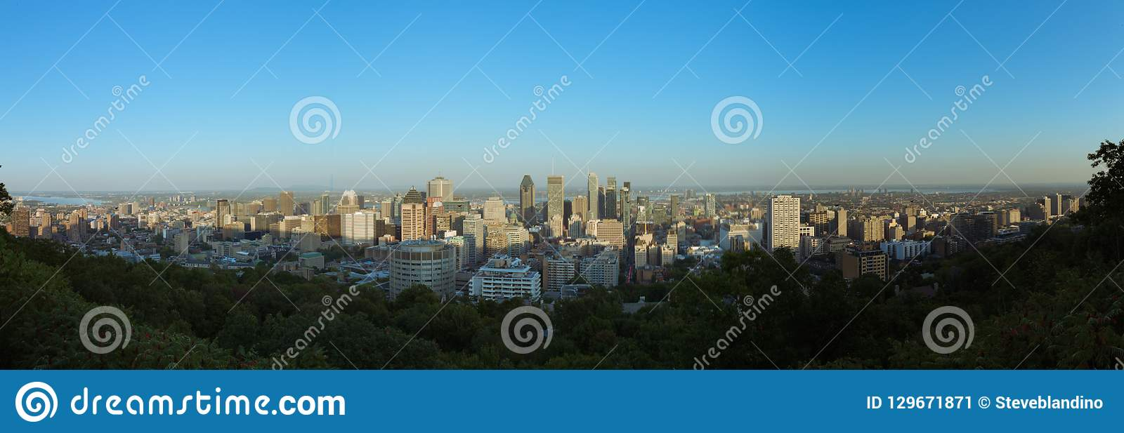 Montreal skyline view from Mount Royal