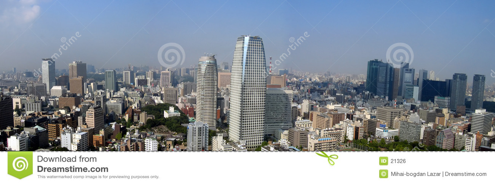 Panoramic tokyo view