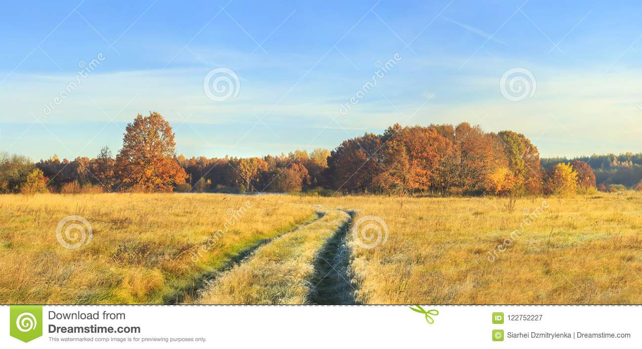 Panoramic view on autumn nature landscape on sunny day. Yellow and red trees on meadow and blue clear sky. Amazing rural scene