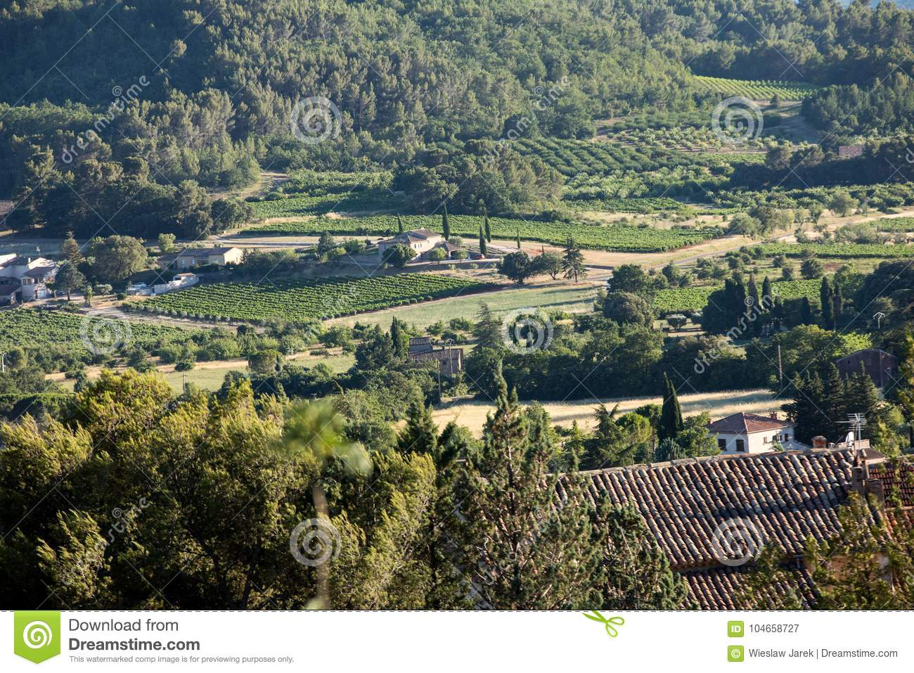 Panoramic view of cultivated fields, vineyards and mountains in Provence,