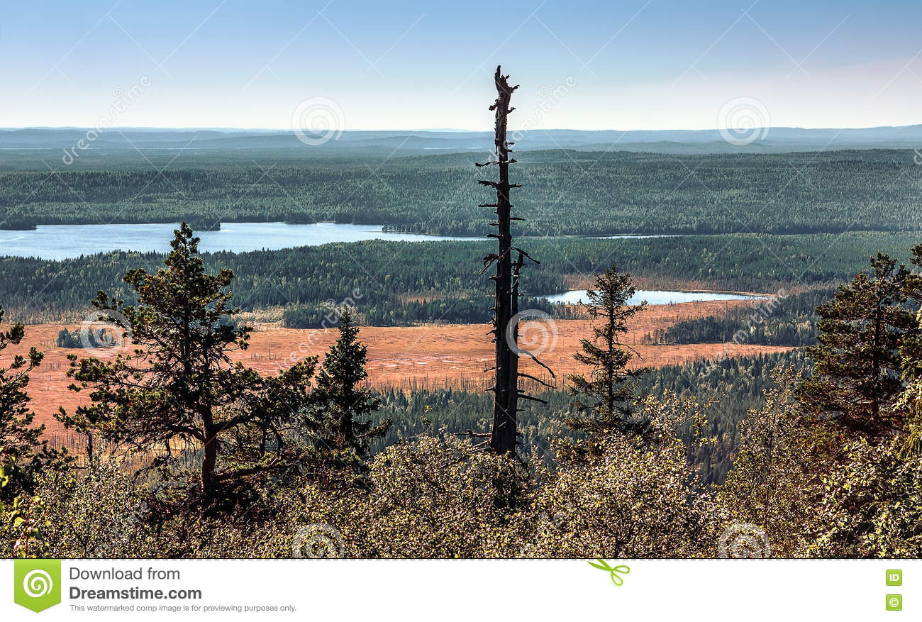 Panoramic View From The Mountain Top Vottovaara