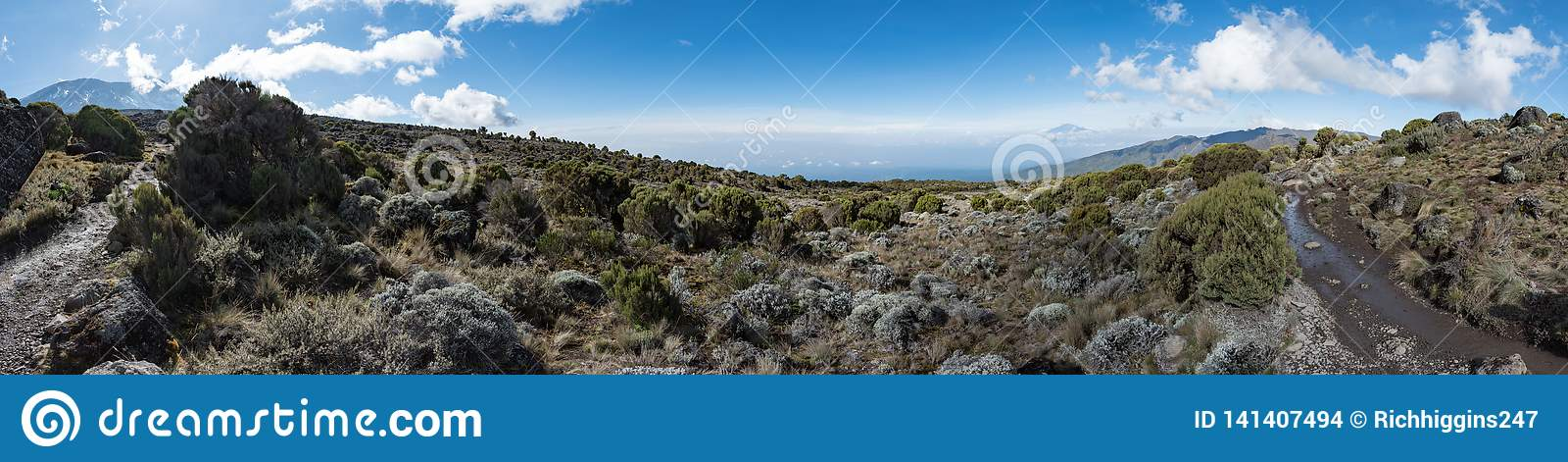 Panoramic view taken in the moorland zone of the Machame route on Mount Kilimanjaro
