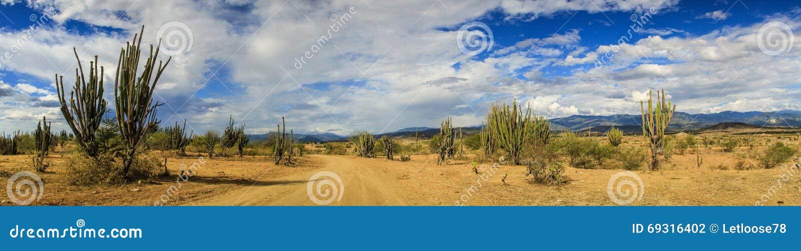 Panoramic view of the Tatacoa Desert, Colombia