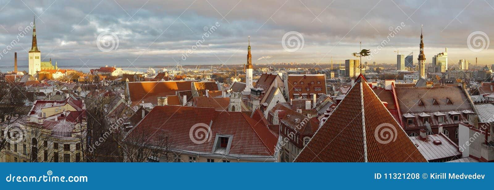 Panoramiczny Estonia widok Tallinn