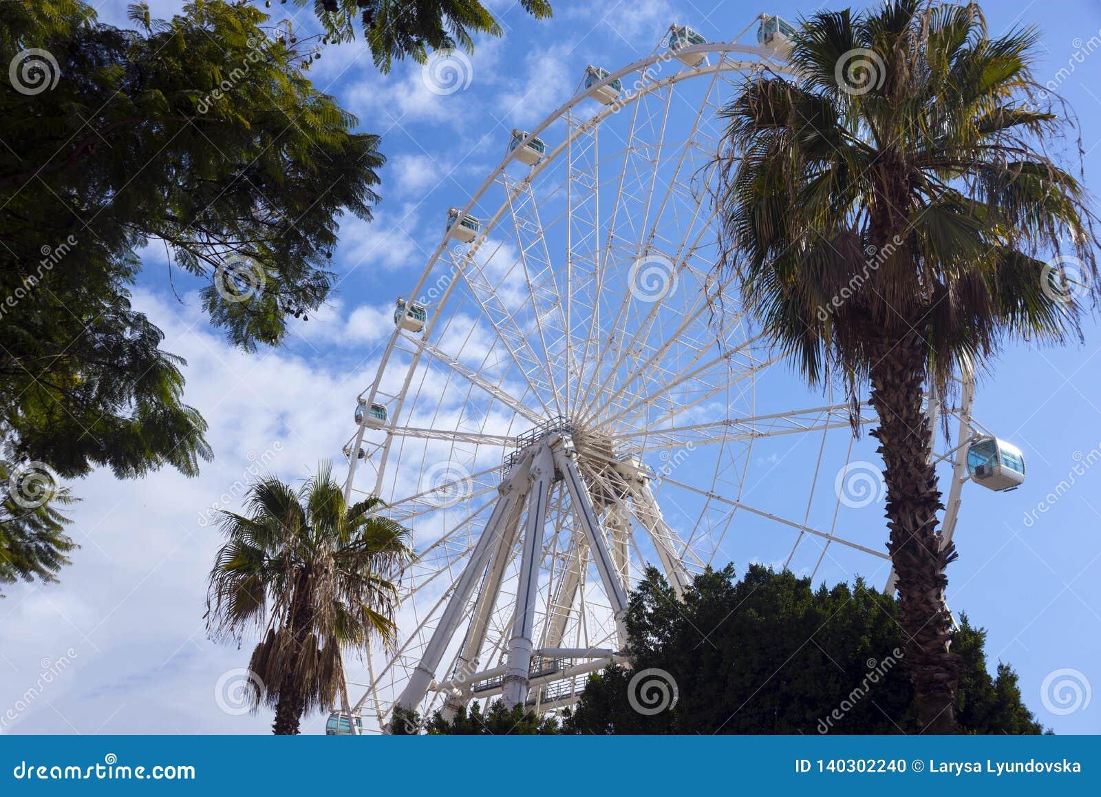 Panoramiczny koło, kabiny i drzewka palmowe przeciw niebieskiemu niebu z chmurami,
