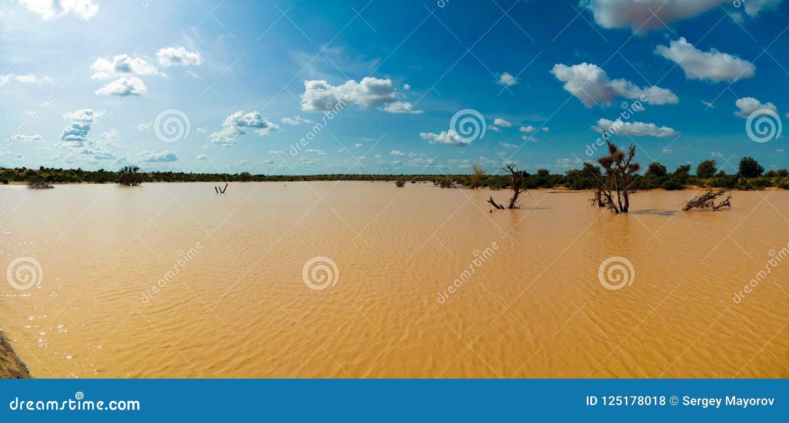 Panoramiczny krajobrazowy widok Sahel Dogon Tabki z zalewającą rzeką i oaza, Dogondoutchi, Niger