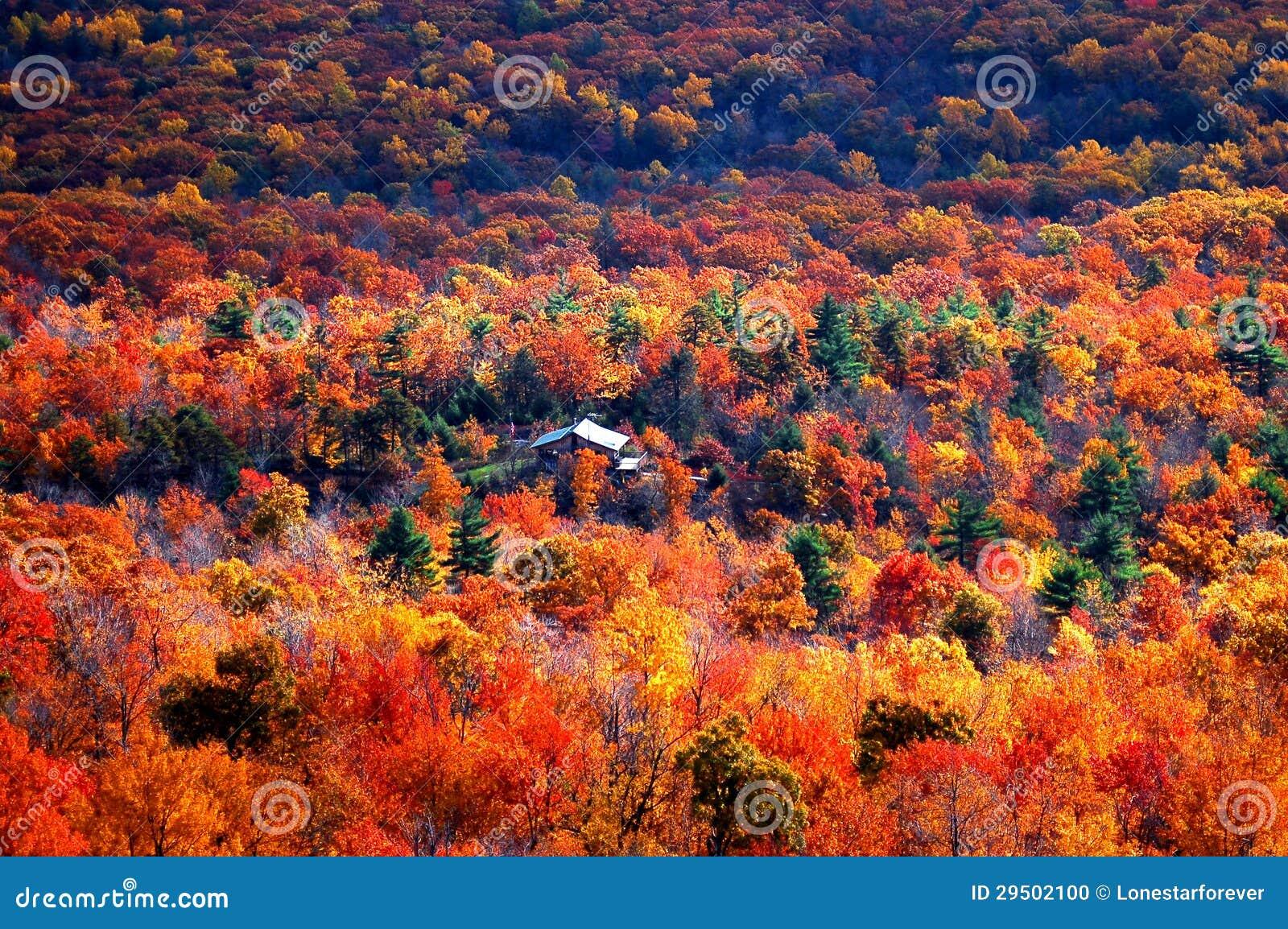 Panoramiczny widok jesieni góra