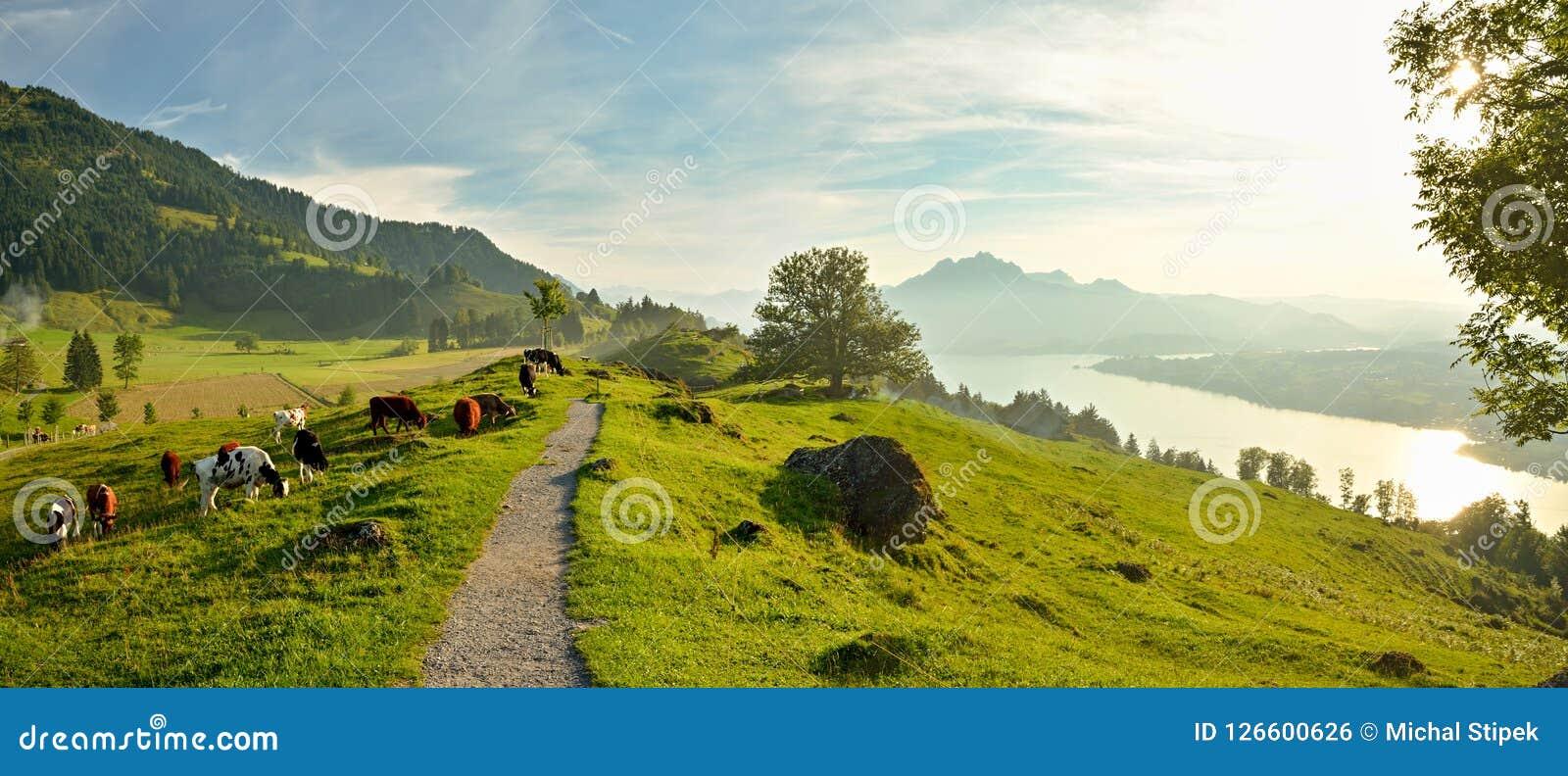 Panoramiczny widok na pięknej Jeziornej lucernie w Szwajcaria