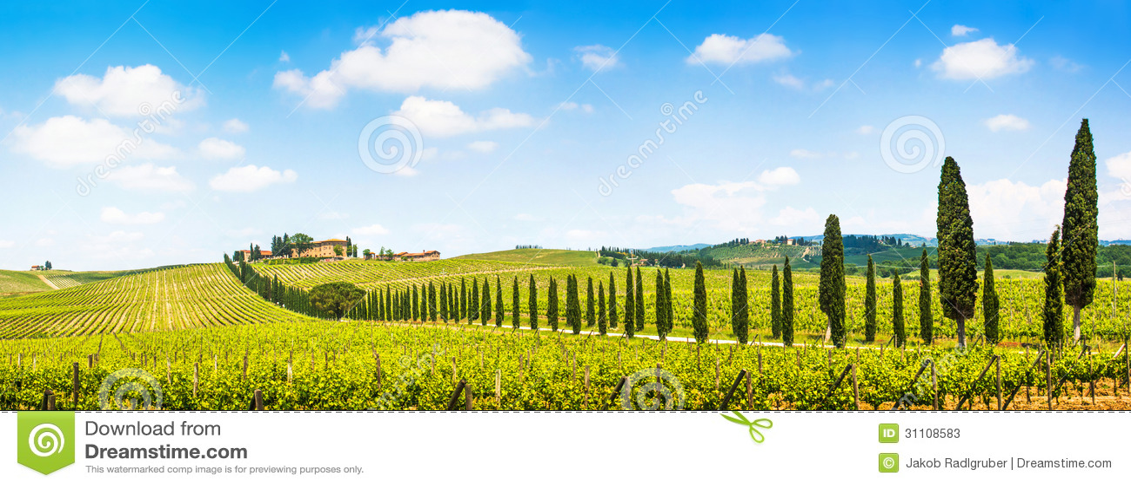 Panoramiczny widok sceniczny Tuscany krajobraz z winnicą w Chianti regionie, Tuscany, Włochy