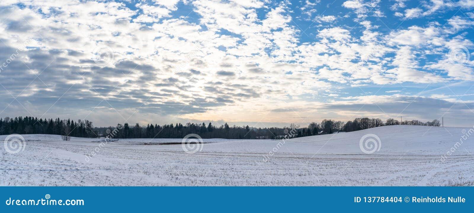 Panoramisch Plattelandslandschap in Sunny Winter Day met Sneeuw die de Grond, Abstracte Achtergrond met Diepe Blik behandelen en