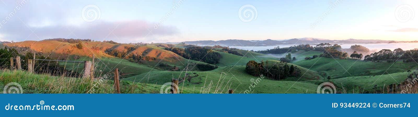 Panoroma rurale Warkworth, isola del nord, Nuova Zelanda NZ del paesaggio