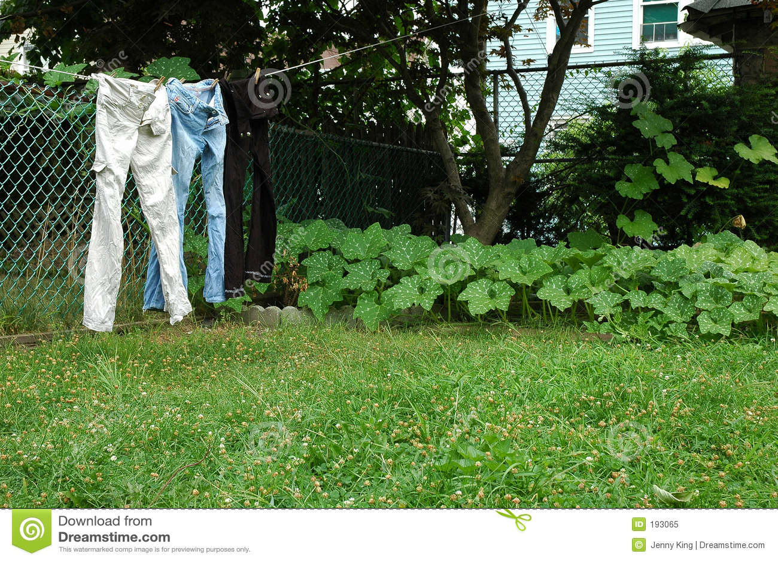 Pantalones vaqueros en línea de ropa.