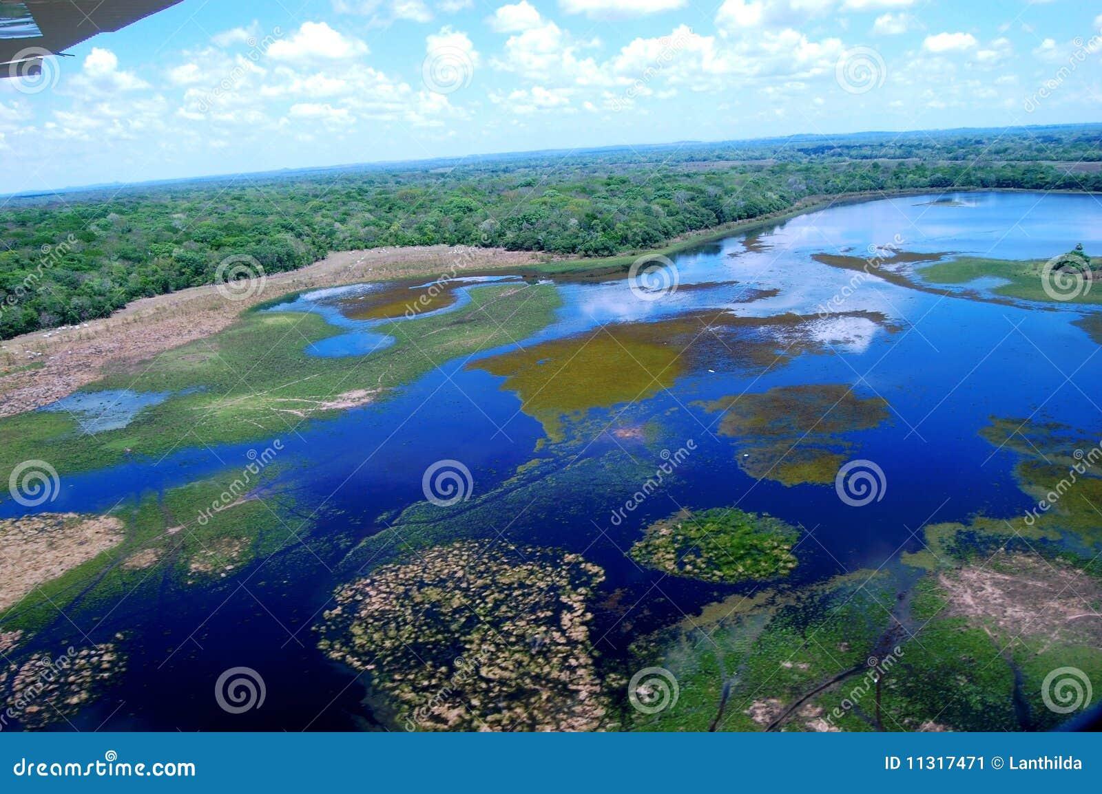 Pantanal do sul