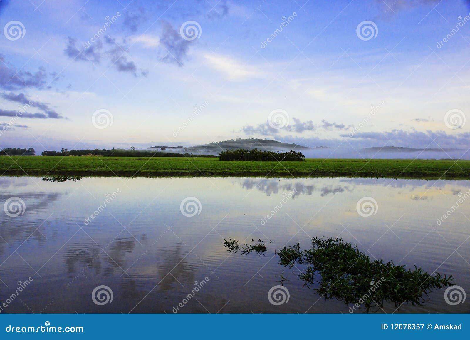 Pantanos Kaw en Guyana francesa