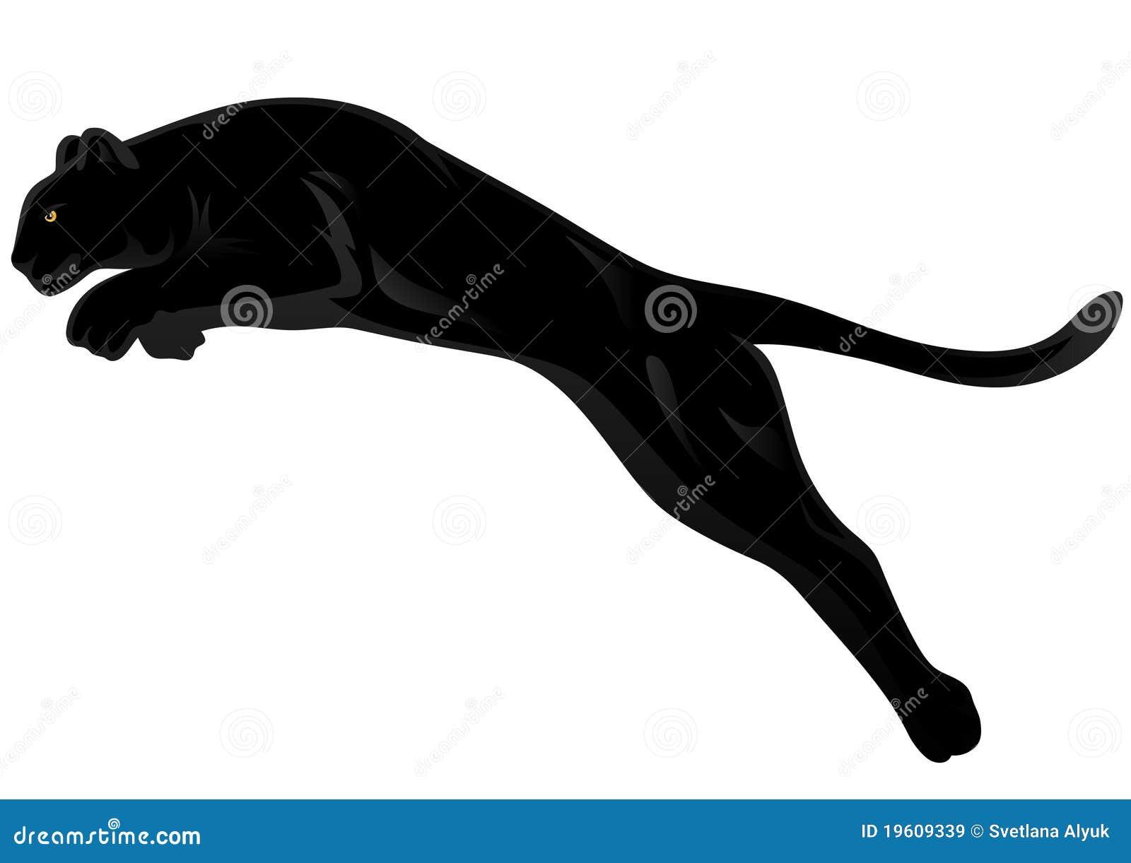 Pantera wektor