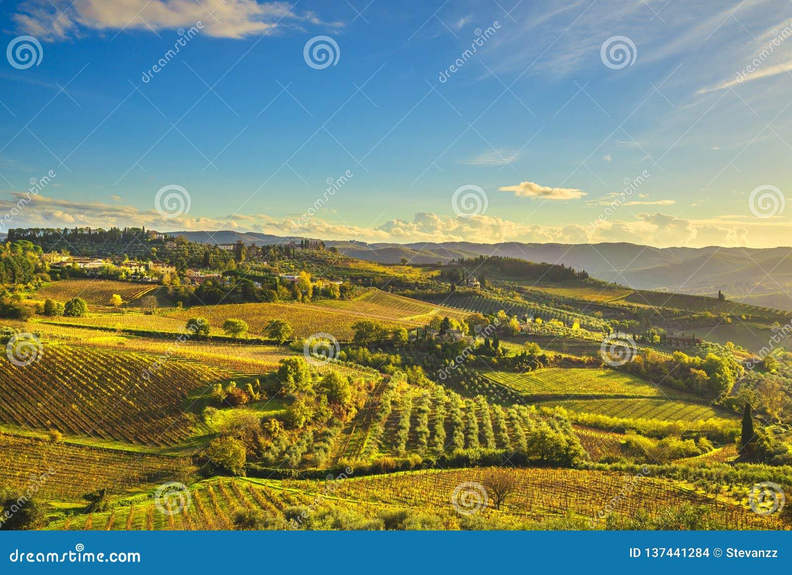 Panzano dans le vignoble et le panorama de chianti au coucher du soleil La Toscane, Italie