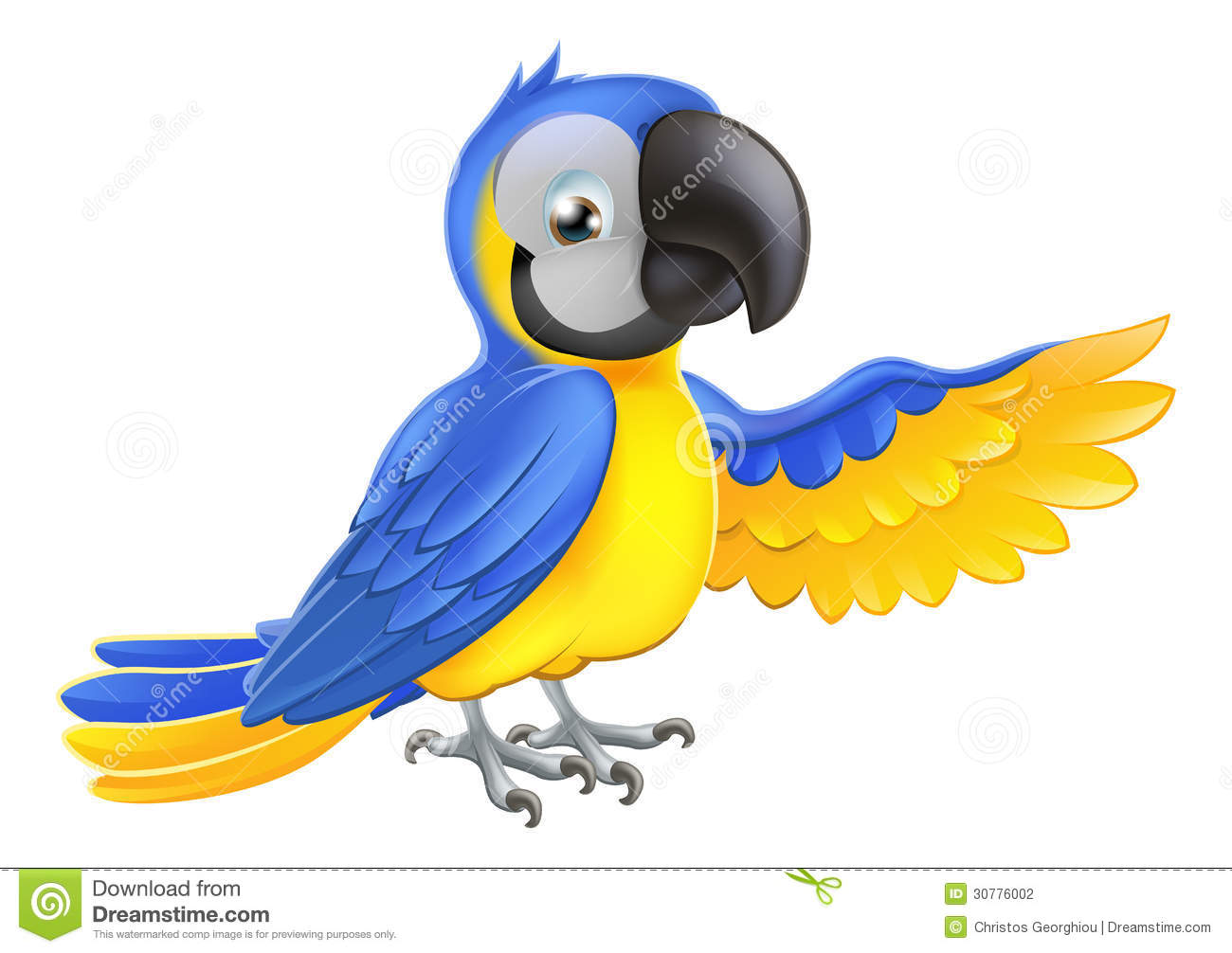 papagaio azul e amarelo bonito fotografia de stock parrot clip art to color parrot clip art black n white