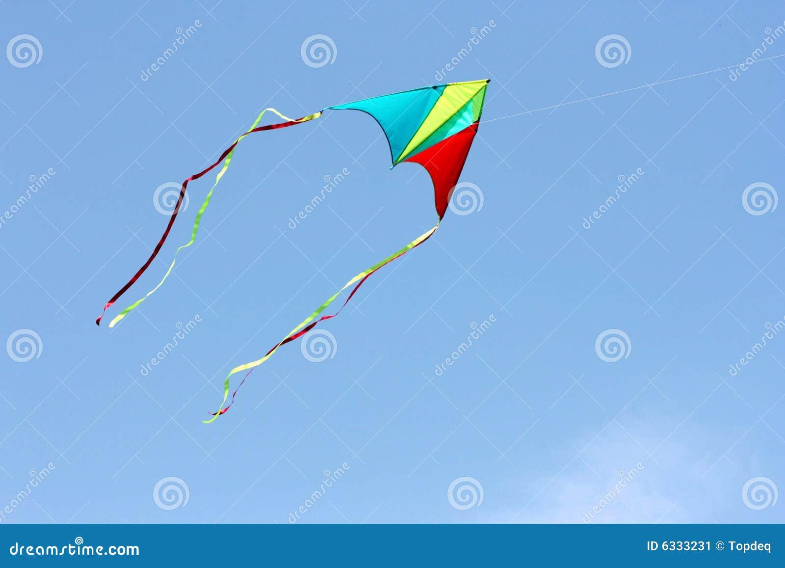 Papagaio da cor no céu