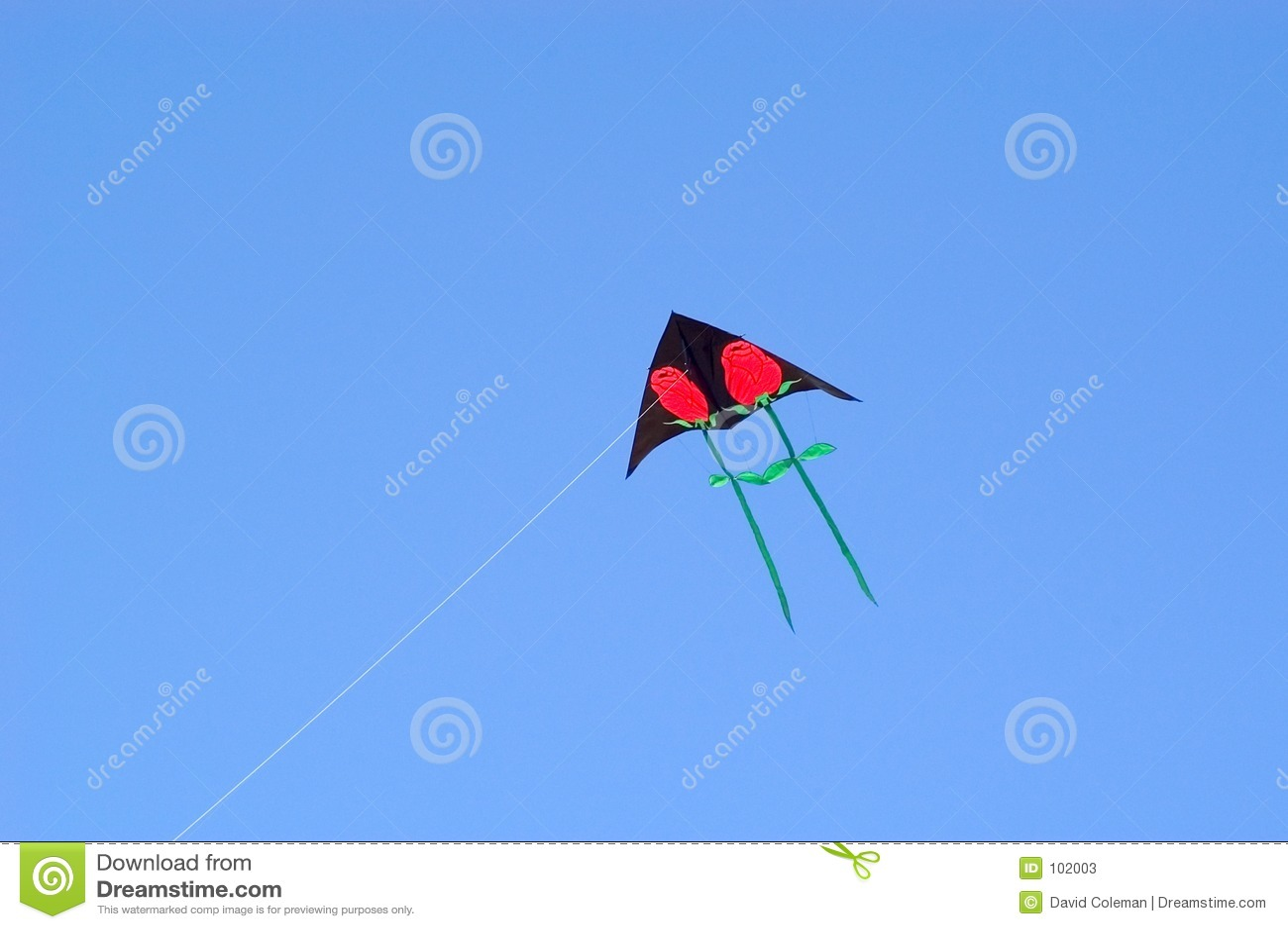 Papagaio de Rosa