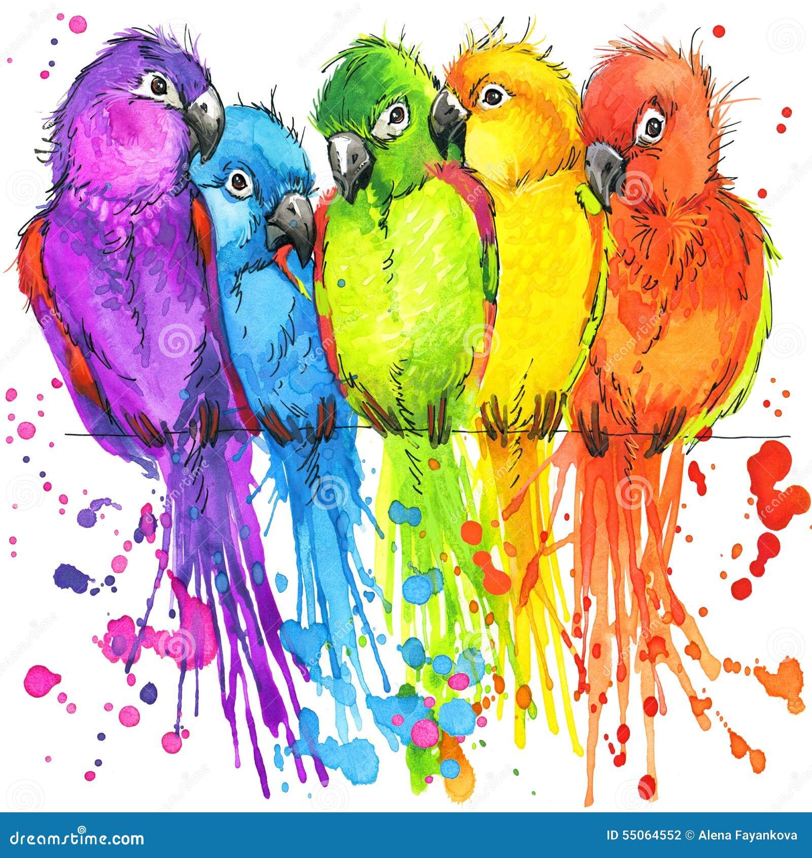 Papagaios coloridos engraçados com o respingo da aquarela textured