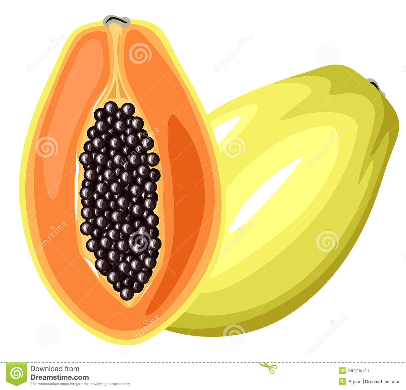 Papaya Tree Clipart Banana Tree Drawing Free Download